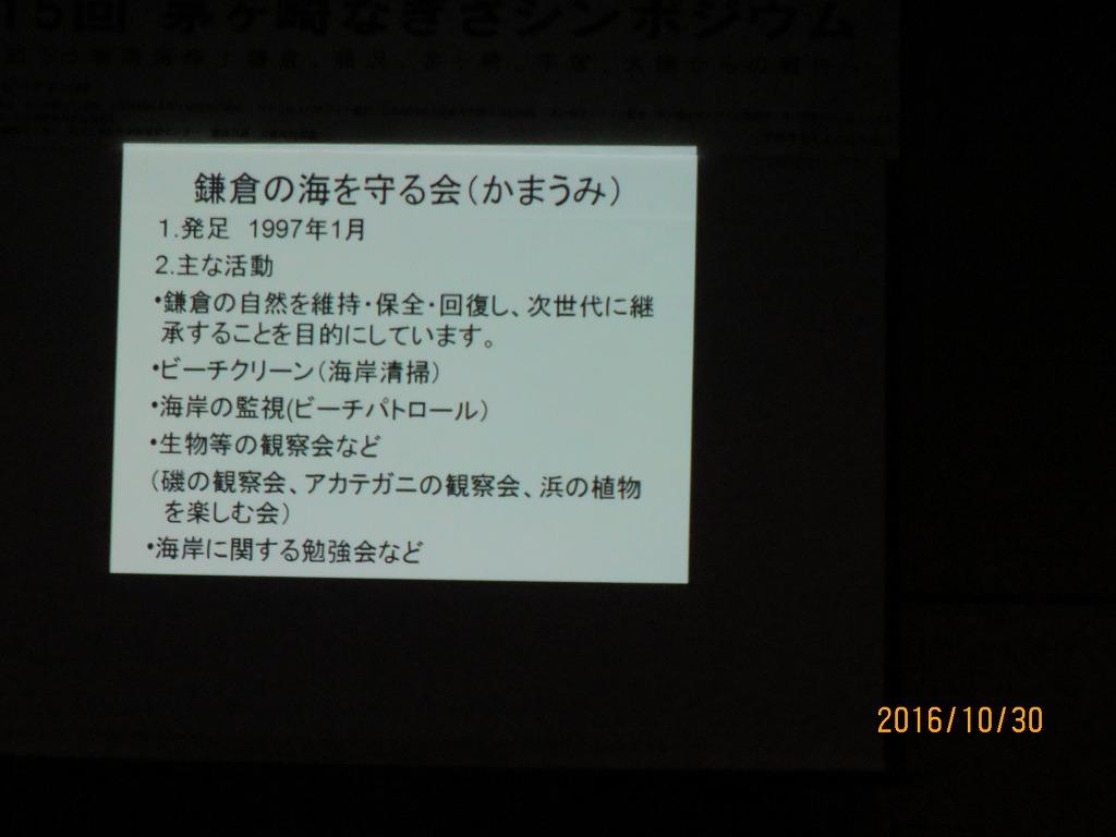 鎌倉からの報告