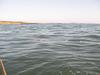 帯状の浮遊物
