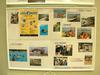 大磯の「いそっこ 海の教室」